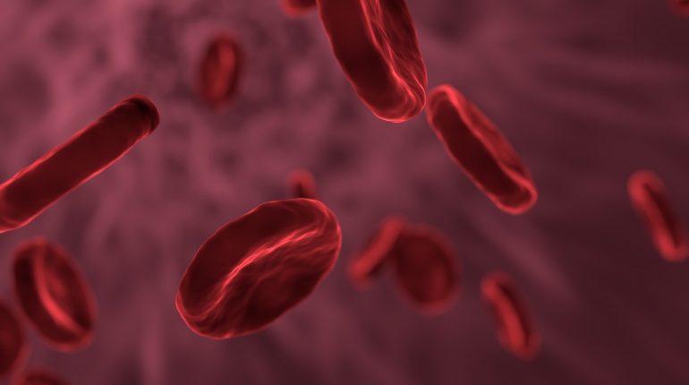badanie krwi Londyn